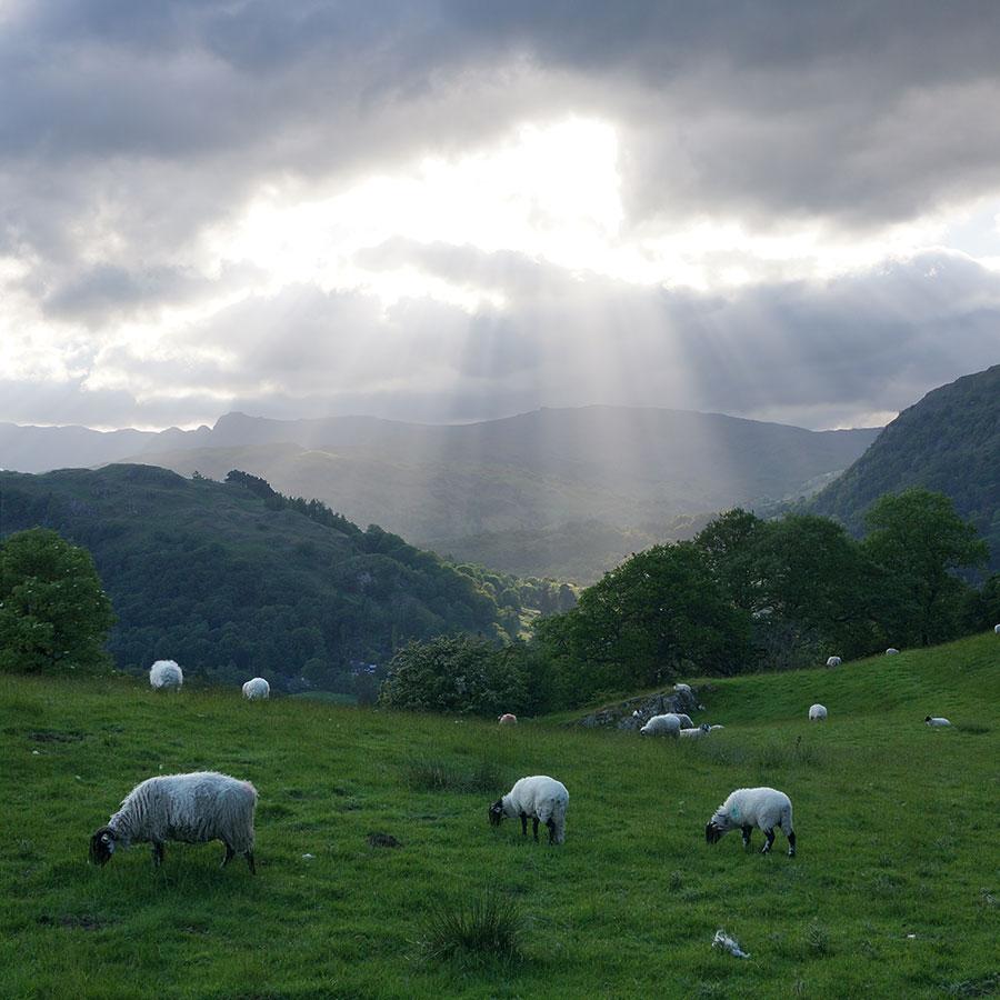 Sunlight breaking through cloud