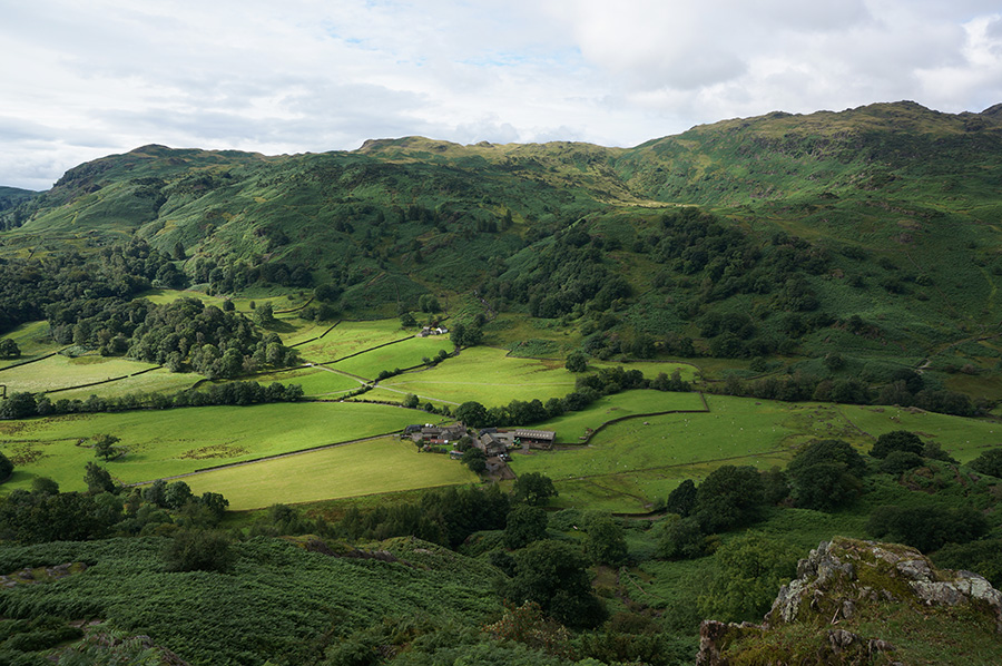 View across Easedale