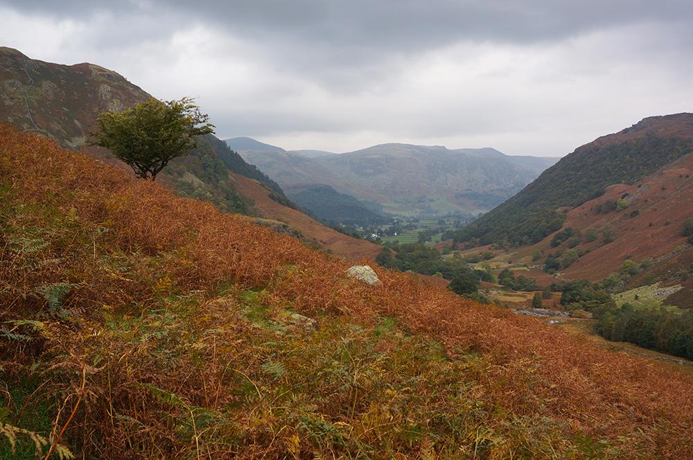 Borrowdale from Eagle Crag