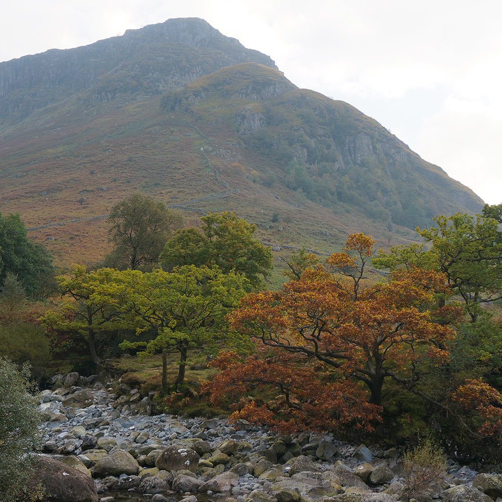 Eagle Crag from Greenup Gill