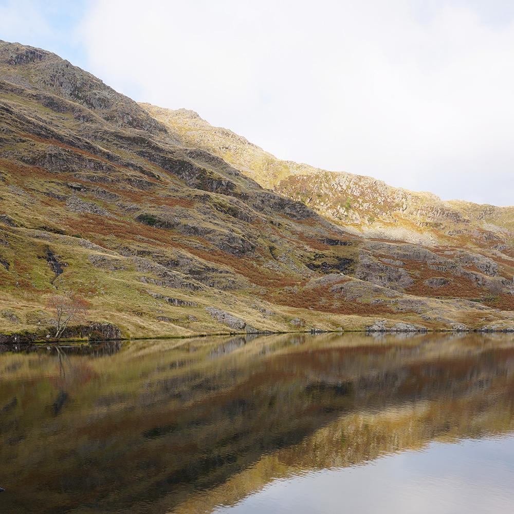 Reflection in Codale Tarn