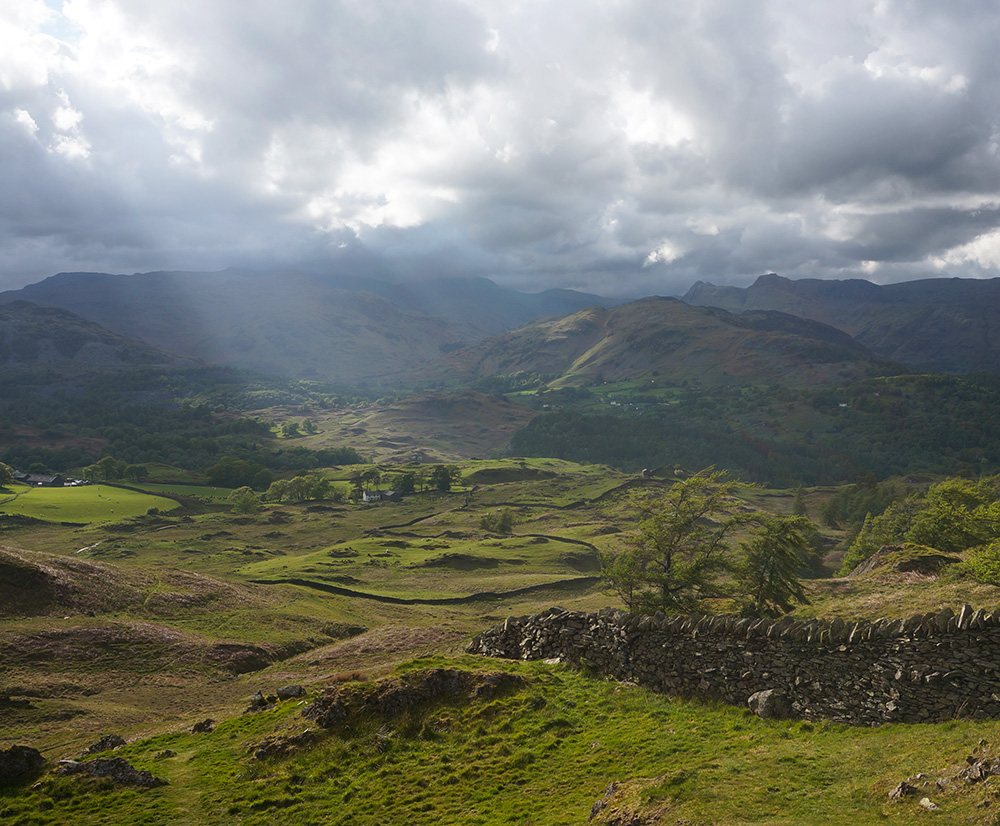 Lingmoor Fell and the Langdale Pikes