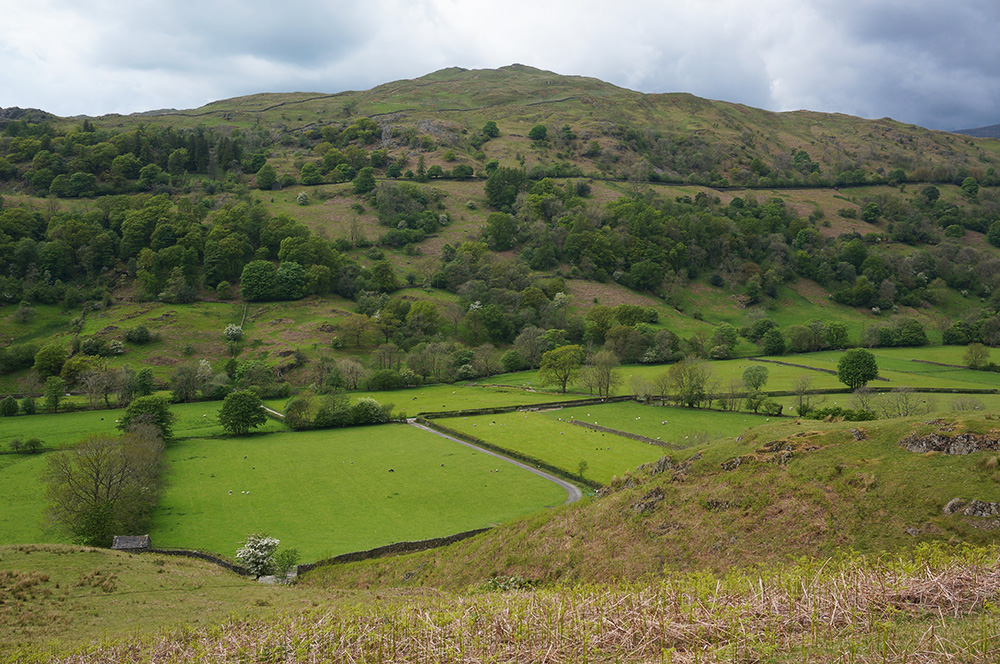 Looking across Troutbeck to Wansfell