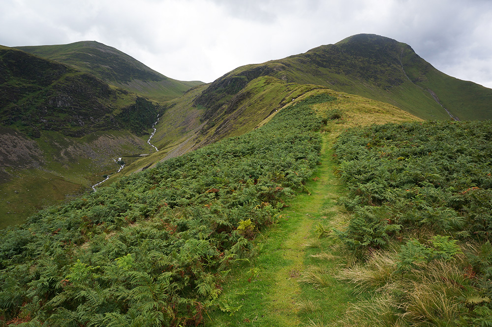 Looking along High Snab Bank to the summit of Robinson