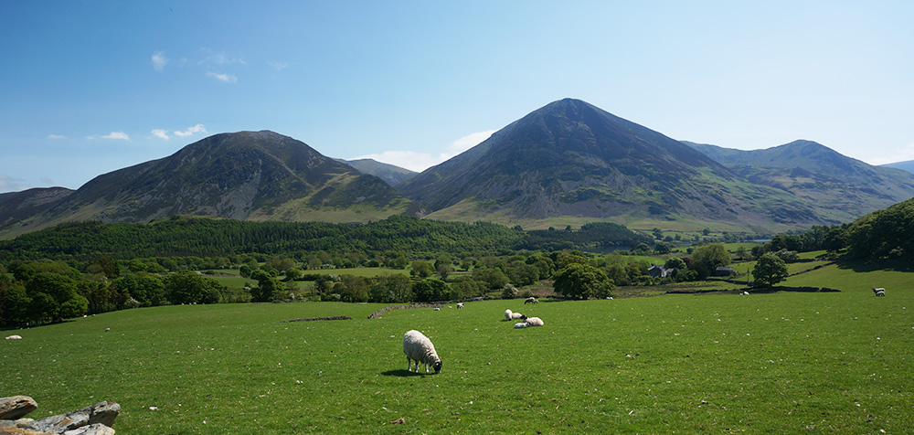 Whiteside, Grasmoor and Whiteless Pike