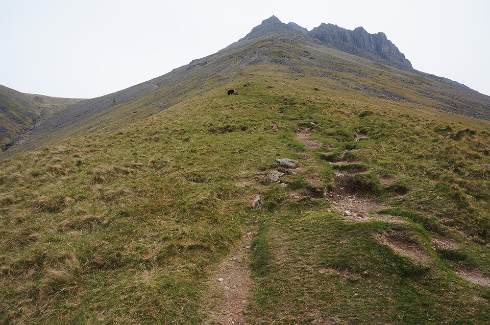 Steep path over Gavel Neese