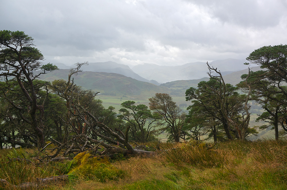 View from Great Mell Fell