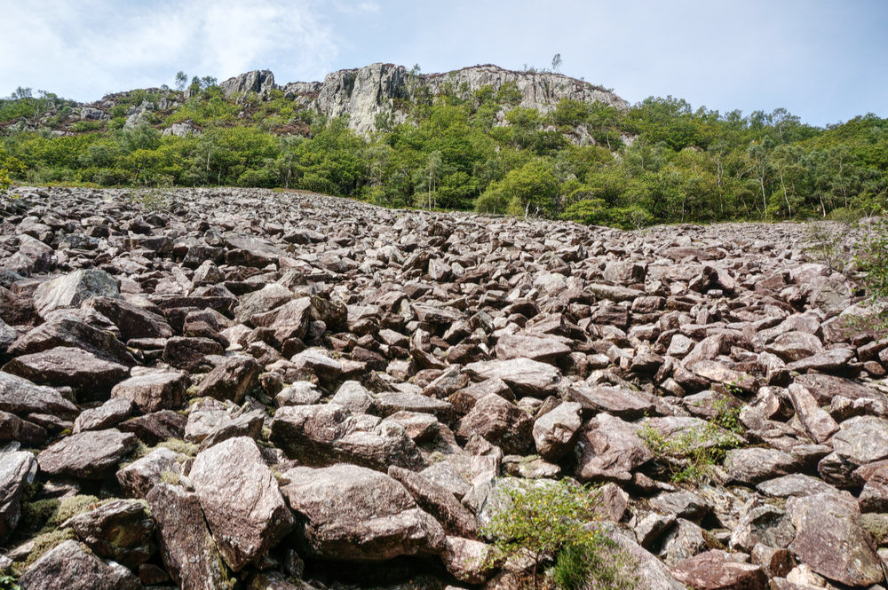 Boulder scree as seen from Wallowbarrow Gorge
