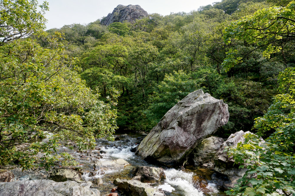 The River Duddon at Wallowbarrow Gorge