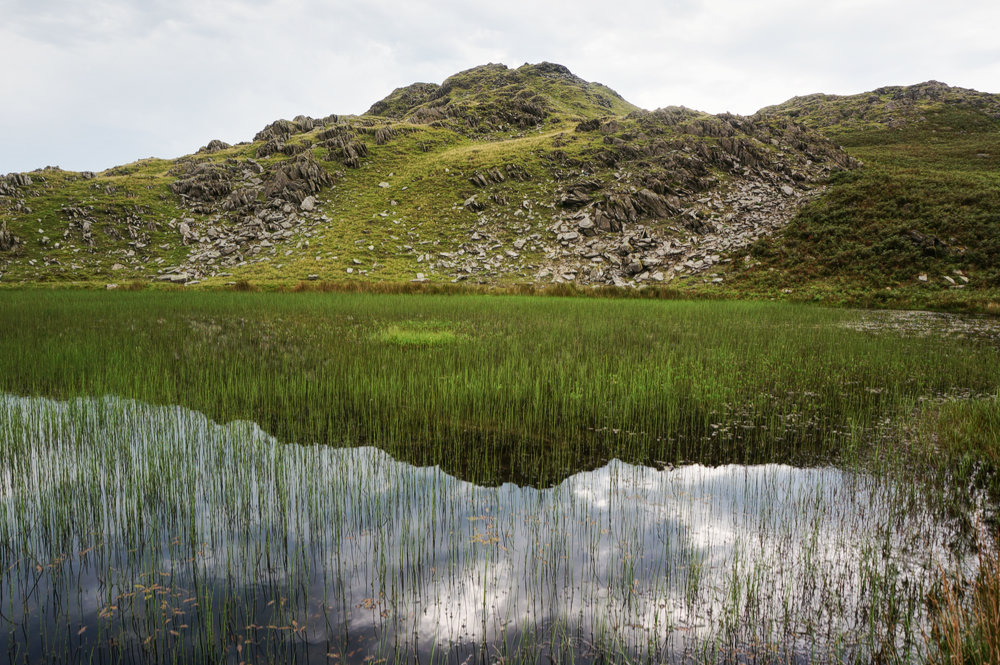 Stickle Pike reflected in Stickle Tarn