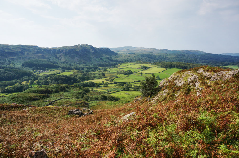 View over Eskdale