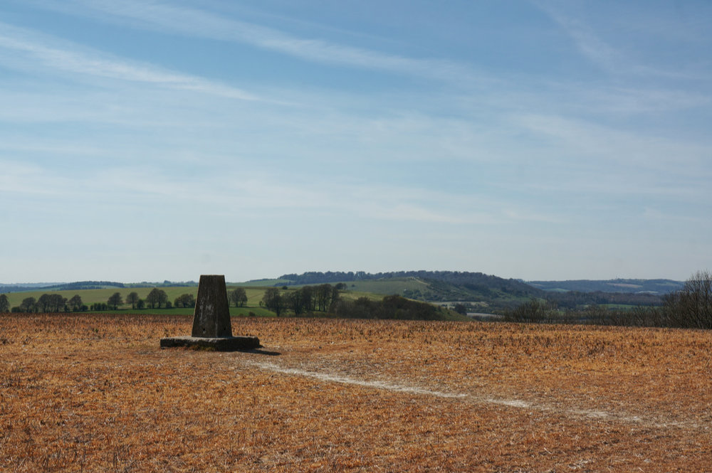 The OS trig pillar at the highest point on Watership Down